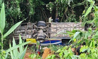 Kon Tum: Xe khách rơi xuống đèo, 5 người tử vong, hàng chục người bị thương | Thaiger