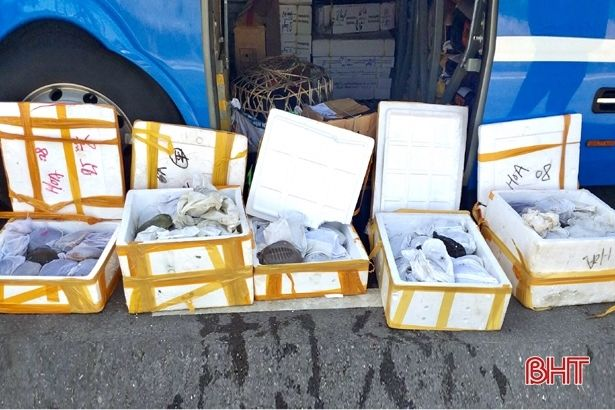 Hà Tĩnh: Bắt ô tô vận chuyển 72.000 khẩu trang y tế và gần 200 cá thể động vật không rõ nguồn gốc | News by The Thaiger