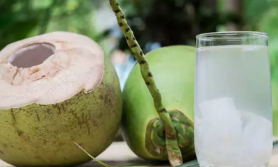 Experts warn against coconut water concoction for kidney stones | Thaiger