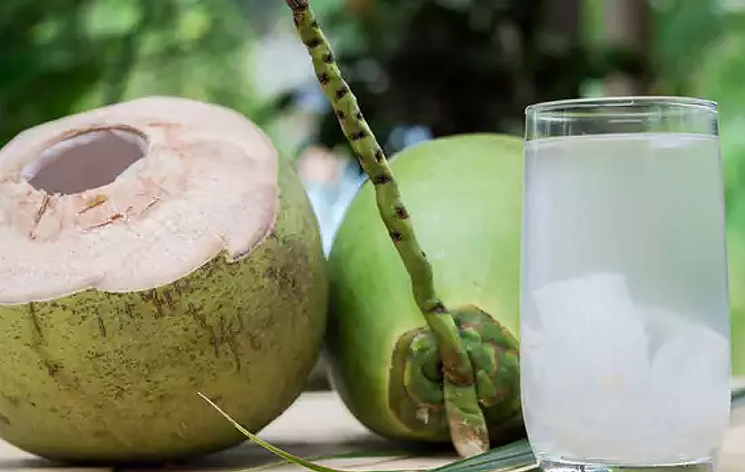 Experts warn against coconut water concoction for kidney stones   News by Thaiger