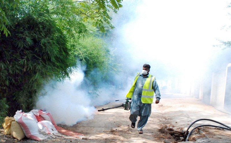 Dengue on the rise in the northeast, wet season worries | Thaiger