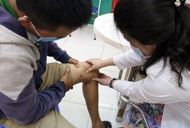 TP. HCM: Đề phòng kiến ba khoang hoành hành đầu mùa mưa | News by The Thaiger