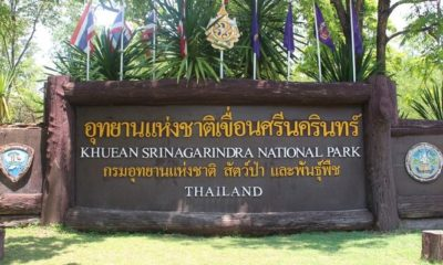 Kanchanaburi park officials remove entry ban for foreigners | Thaiger