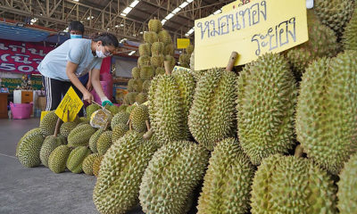 CCSA to allow sports gatherings, exempt Chinese fruit traders from travel ban | Thaiger