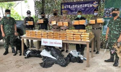 2 arrested with 409 kilograms of marijuana in Nakhon Phanom | The Thaiger