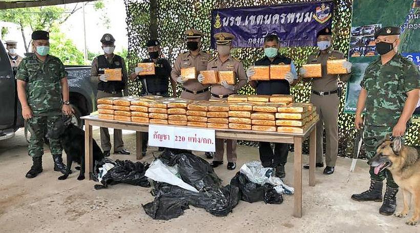 220 kilograms of marijuana seized, 2 arrested in Nakhon Phanom   Thaiger