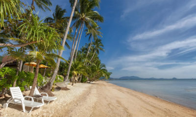"""Thai tourism sector """"seriously wounded"""" by pandemic 