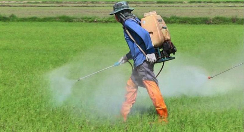 PM denies government split over toxic chemical ban   Thaiger
