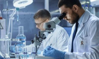 Covid-19 is capable of infecting the brain – Yale study   The Thaiger