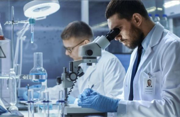 Covid-19 is capable of infecting the brain – Yale study   Thaiger