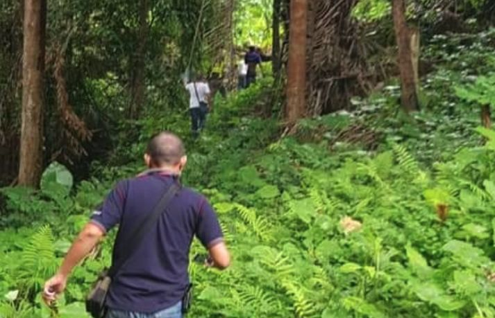 Missing retired police officer found pinned under tree in Patong | Thaiger