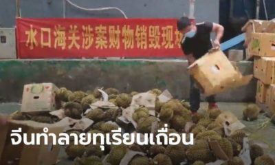50 tonnes of dodgy durian seized and destroyed in China | Thaiger