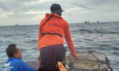 Navy divers find captain's body after boat sank in weekend storm | The Thaiger