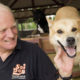 Soi Dog Foundation co-founder John Dalley honoured in Queen's Birthday Honours List | Thaiger
