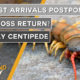 Thailand News Today | Tourist arrivals postponed, Will Boss return?, deadly centipede | October 8 | The Thaiger