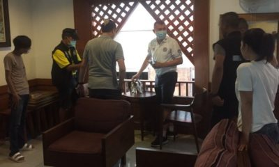 Man arrested for allegedly abusing stray cats at Koh Phi Phi hotels | The Thaiger
