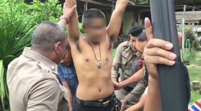 Krabi man arrested for animal abuse after allegedly killing pet dogs | The Thaiger