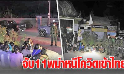 Thai border officials capture 14 illegal Burmese migrants at Tak border areas | Thaiger