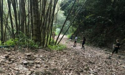 The road less travelled – trekking to the Kalim Viewpoint   The Thaiger