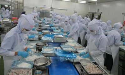 Fisheries department strengthens hygiene measures at Thailand's seafood factories   The Thaiger