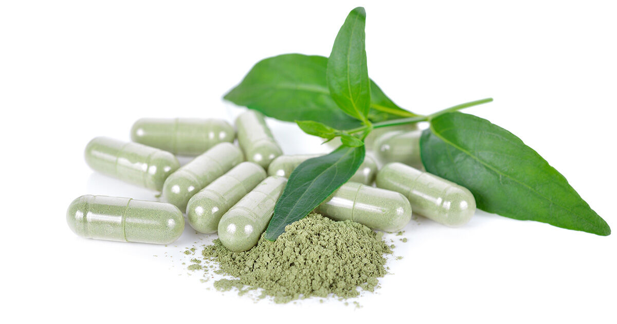 Thai herb studied for alternative Covid-19 treatment | The Thaiger