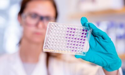Clinical trials confirm AstraZeneca's Covid-19 vaccine is safe and effective | Thaiger