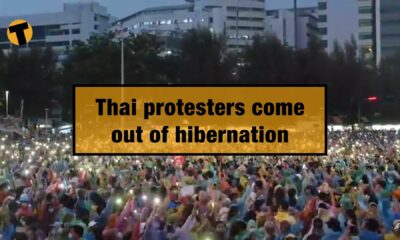 Thai protesters come out of hibernation, but has the movement run out of steam? | VIDEO | Thaiger