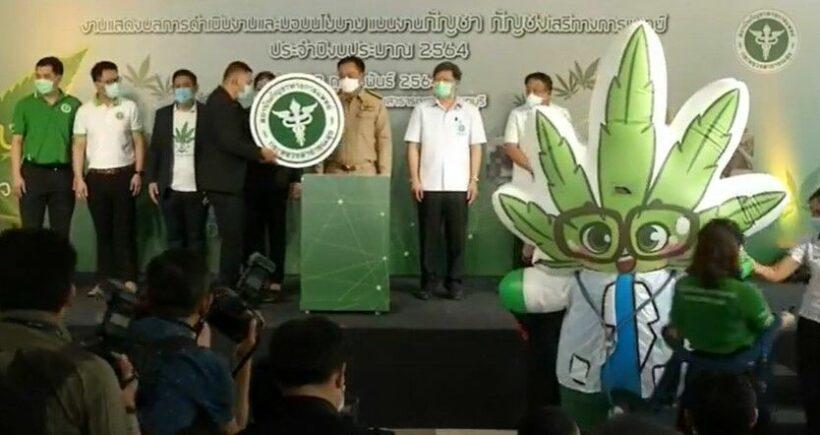 "Thai FDA expedites the process to list cannabis as an ""essential medicine"" | The Thaiger"