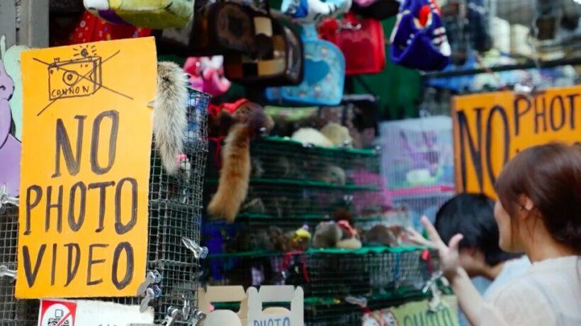 Health officials deny WHO investigation into Bangkok's Chatuchak market as potential origin of Covid   Thaiger