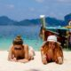Despite lack of vaccine clarity, TAT still aiming for Q3 revival of foreign tourism | The Thaiger