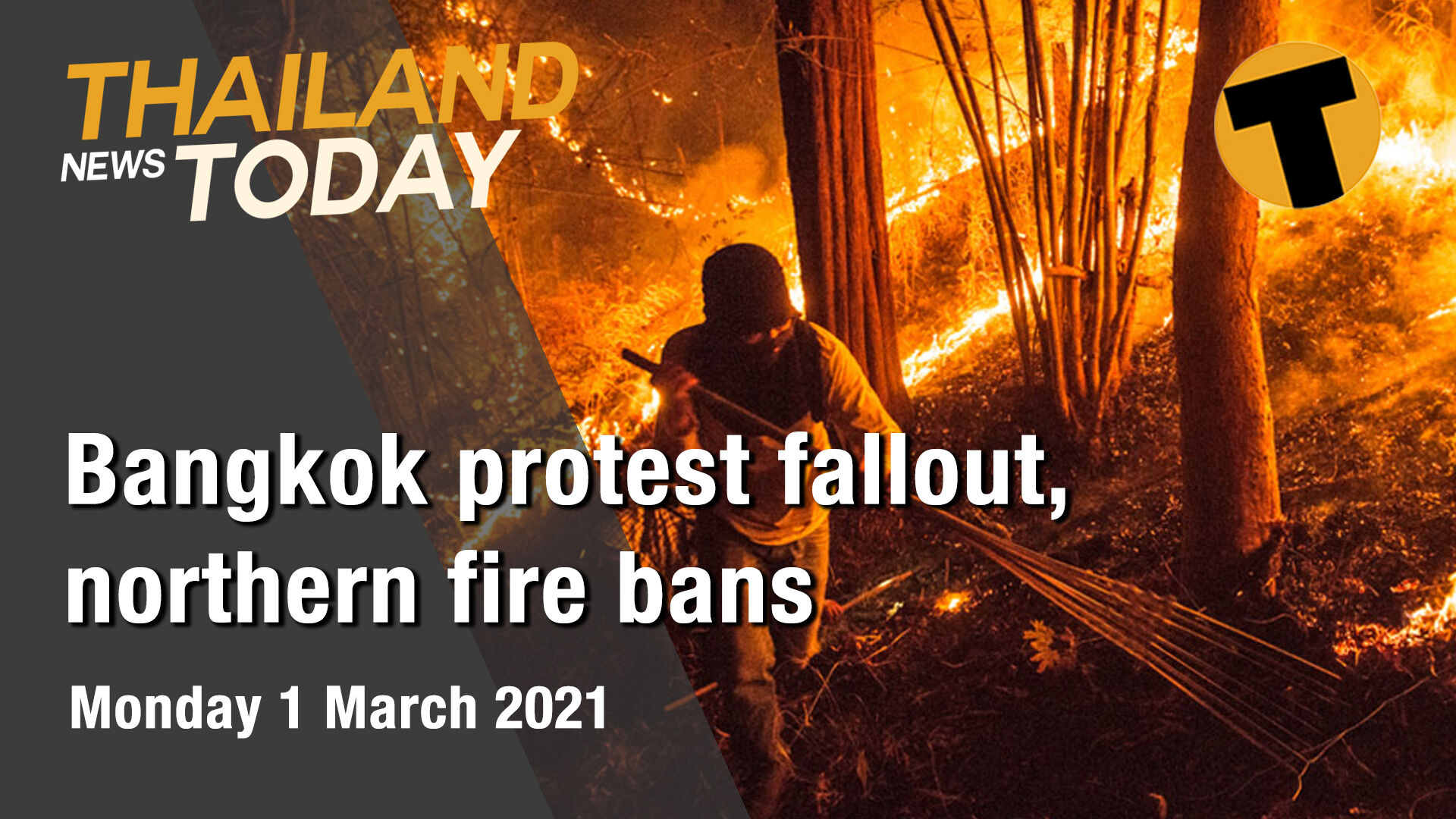 Thailand News Today | Bangkok protest fallout, northern fire bans | March 1 | The Thaiger