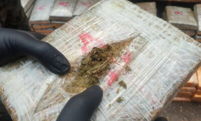 Another drug bust near the Mekong River, 500 kilograms of cannabis seized | The Thaiger