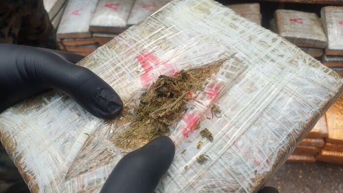 Police seize 920 kilograms of cannabis smuggled across the Mekong River | News by The Thaiger