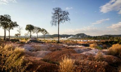 Tourism developments threaten Cambodia's forests and coastline | Thaiger
