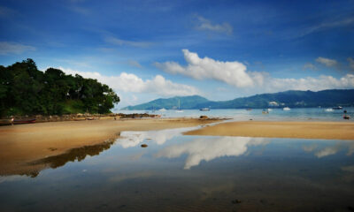 Patong official denies wastewater to blame for macro algae bloom along beachfront | Thaiger