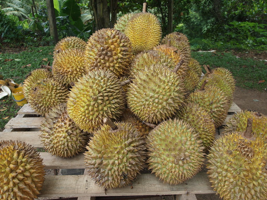 Thailand fruit exports up, despite new Covid-19 fears | Thaiger