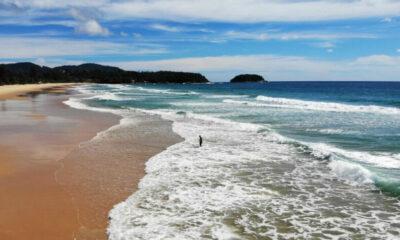 "Phuket's July Sandbox no-quarantine model ""needs a major revamp"" | Thaiger"