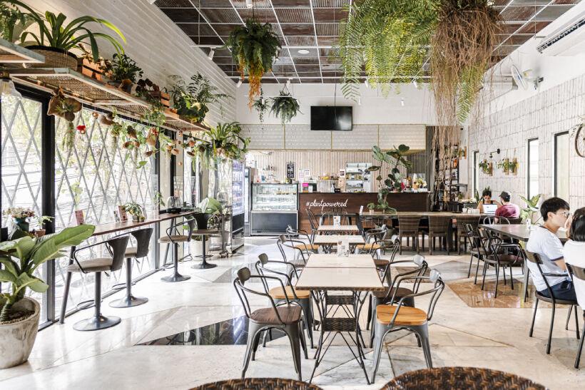 Top 5 Vegan and Vegetarian Restaurants in Bangkok | News by Thaiger
