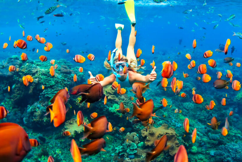 Top 5 Island Tours in Samui | News by Thaiger