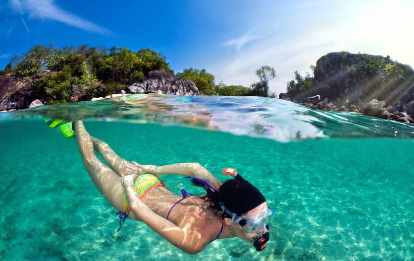 Top 5 Scuba Diving Snorkelling Tours in Samui   News by Thaiger